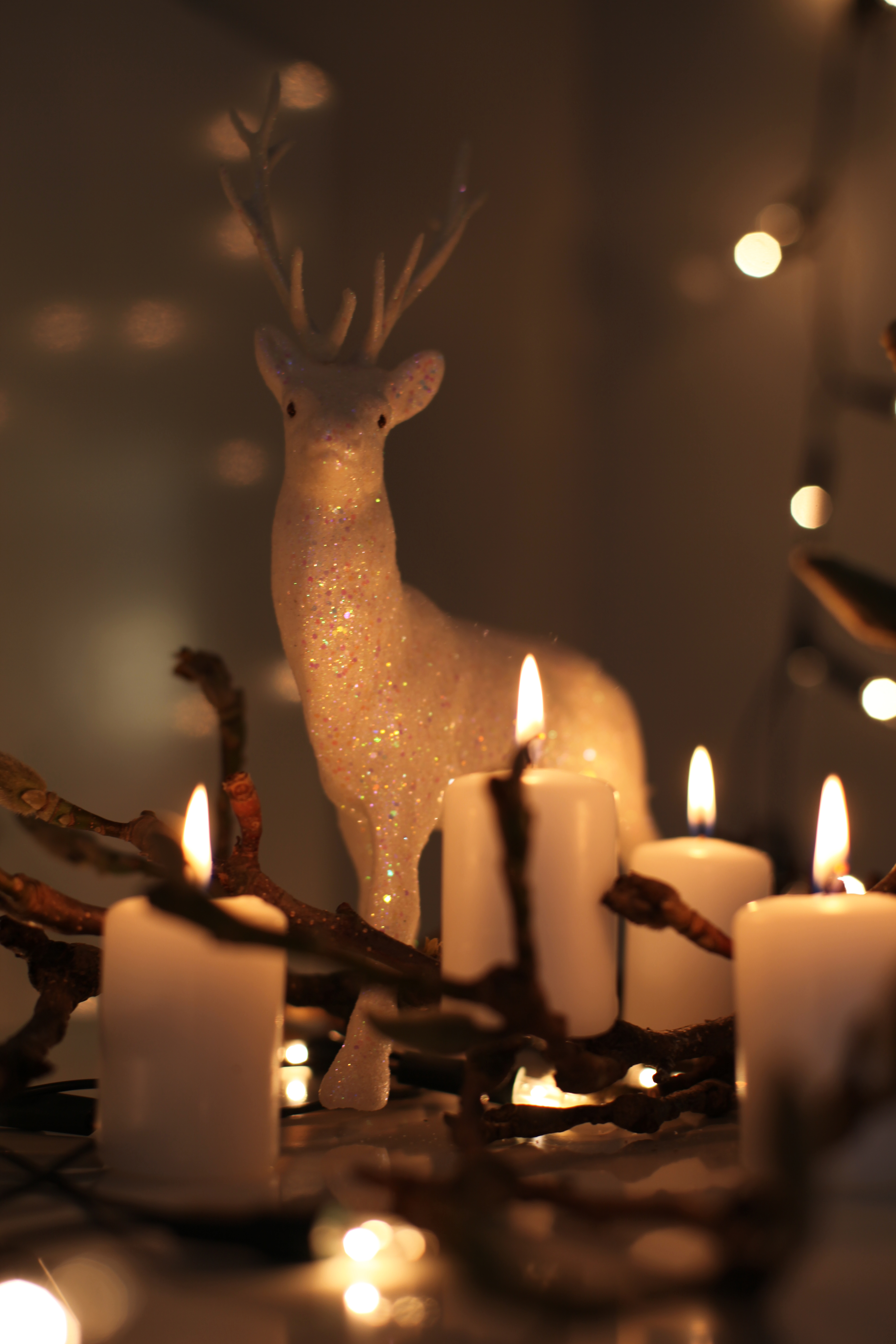 4. Advent (c) FSF