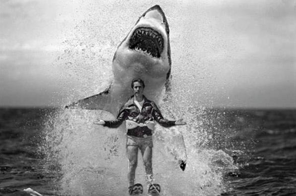 Fonzie jumps over the shark © bubblews.com