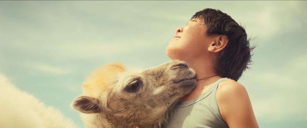 Nebesnyj Verbljud | Celestial Camel | Das himmlische Kamel Land: RUS 2015 Regie: Yury Feting Bildbeschreibung: Mikhail Gasanov Sektion: Generation
