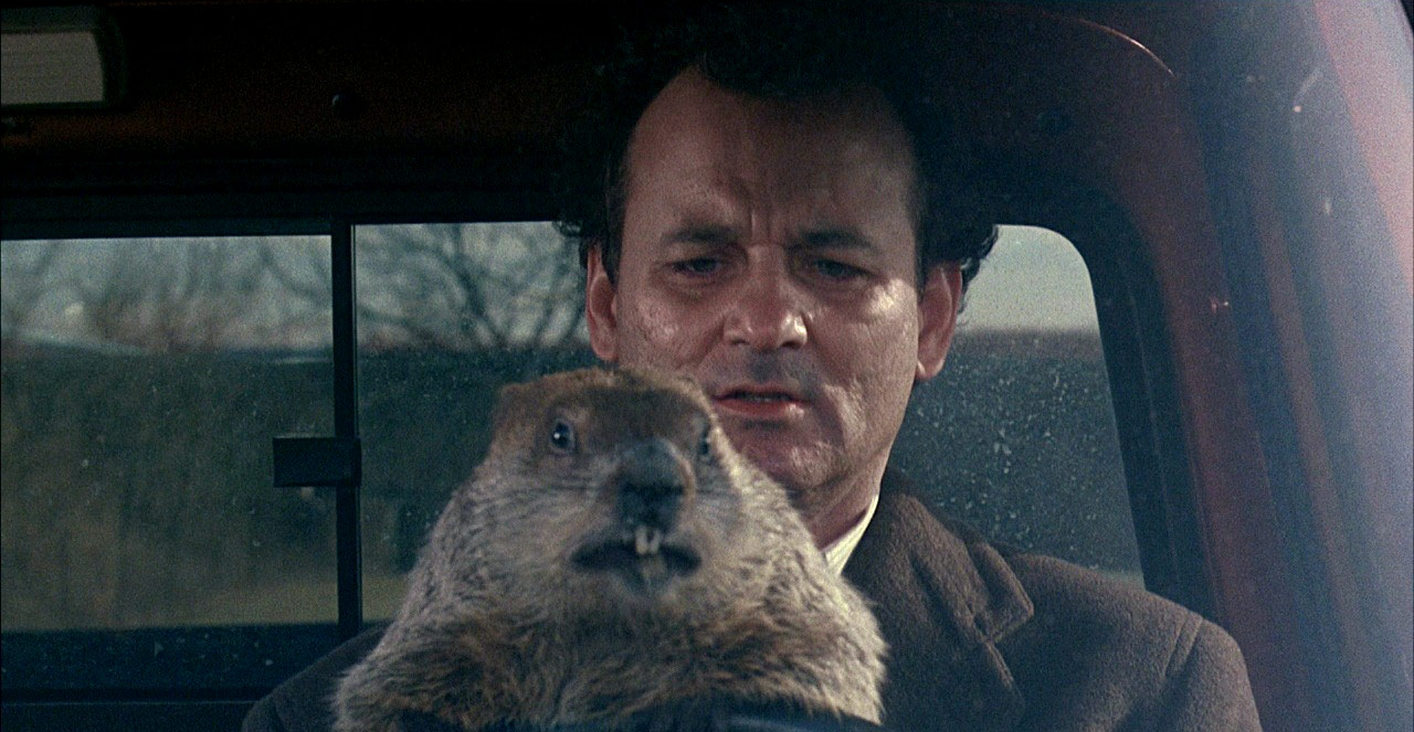 Bill Murray als Phil Connors in Groundhog Day © Columbia TriStar Home Entertainment
