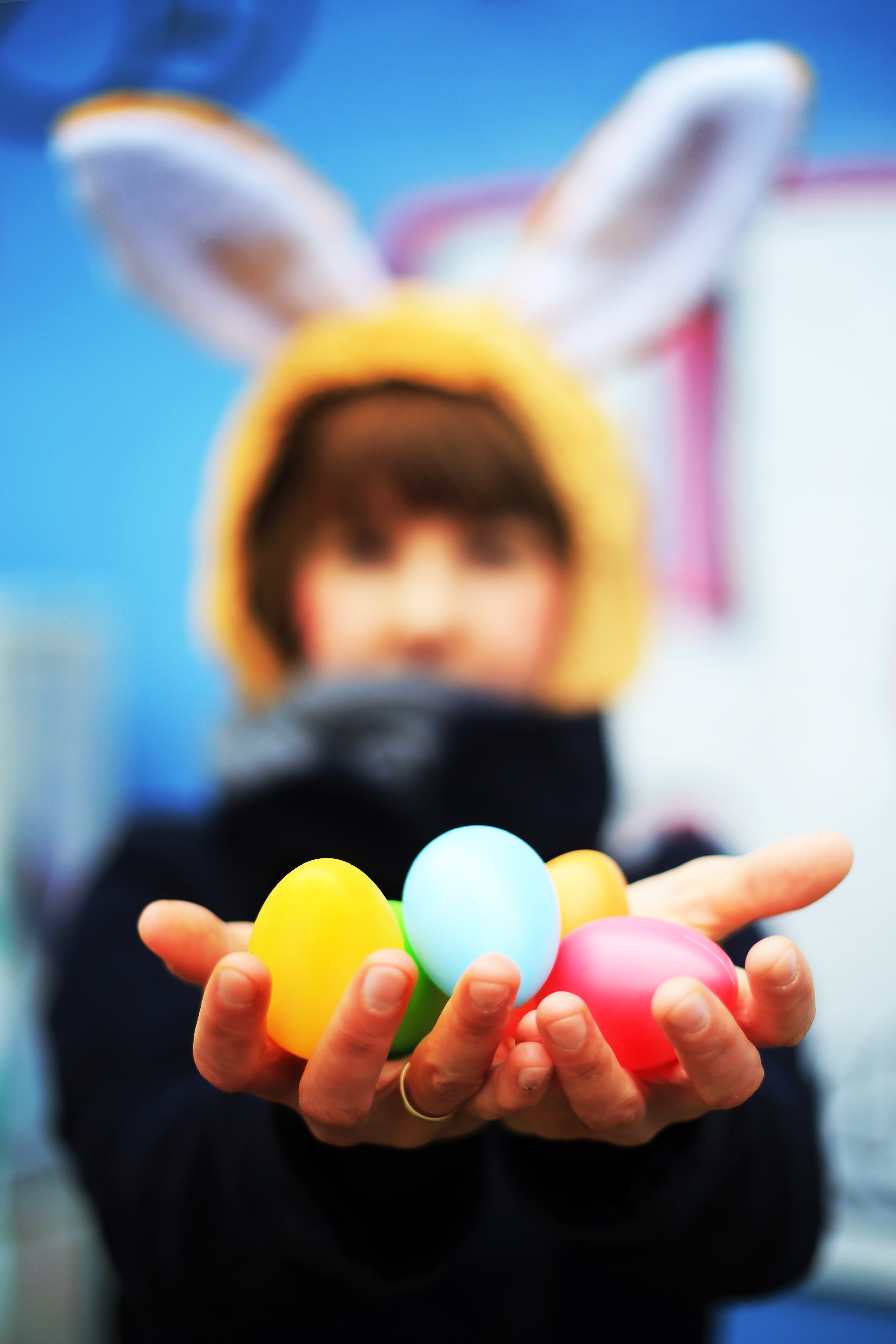 Ostergruß der FSF, Frohe Ostern © sh/FSF