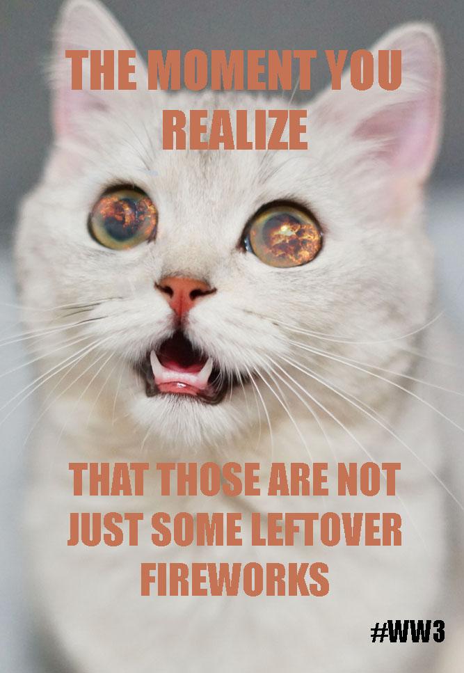 Dieses Meme dient als ein Beispiel für den im Artikel diskutierten Galgenhumor des #ww3-Trends. Memes-Collage © Janina Pickel