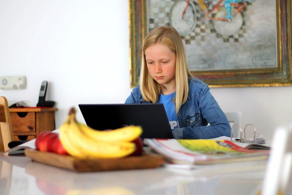 Bild von Markus Trier auf Pixabay: Mädchen sitzt am Tisch vor PC mit vielen Unterrichtsmaterialien; Symbolbild Homeschooling | https://pixabay.com/de/photos/homeschooling-schule-technologie-5121262/